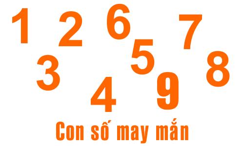 Chọn ngẫu nhiên với tự chọn số xổ số: Cái nào Tốt hơn?