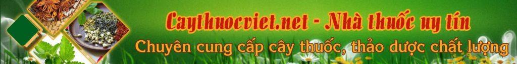 banner caythuocvietnet